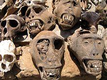 animals skulls at the Fetish Market/Lomé Fetish Market