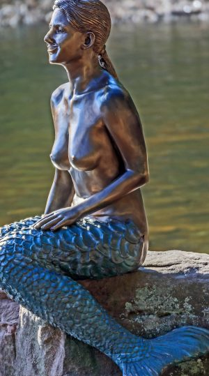 The Legend of Dr. Trott's Apothecary and the Captured Mermaid - Photo